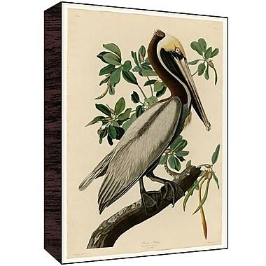 Green Leaf Art Pelican IV Painting Print; 30'' H x 20'' W x 1.5'' D
