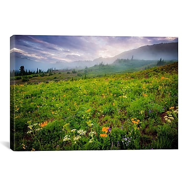 iCanvas 'Colorado Flowers' by Dan Ballard Photographic Print on Canvas; 40'' H x 60'' W x 1.5'' D