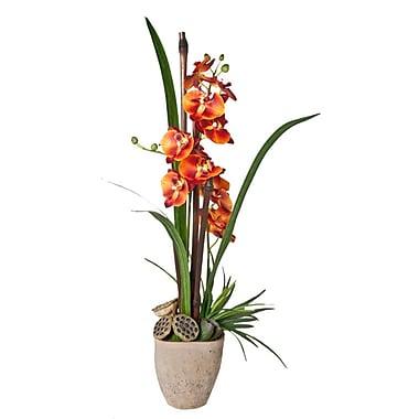 Creative Branch Rust-Orange Phalaenopsis in Planter