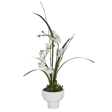 Creative Branch Faux White Orchids in Pot