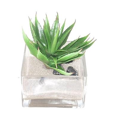 Creative Branch Faux Agave Desk Top Plant in Decorative Vase