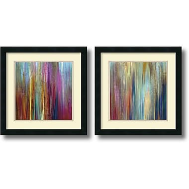 Amanti Art Sunset Falls Framed Art by John Butler, 2/Pack (DSW1004252)