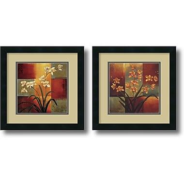 Amanti Art White Orchid, Orange Orchid Framed Art by Jill Deveraux, 2/Pack (DSW1004253)