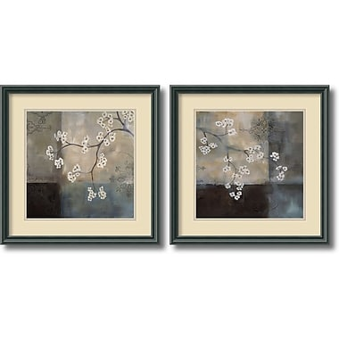 Amanti Art Spa Blossom Framed Art by Laurie Maitland, 2/Pack (DSW1004258)