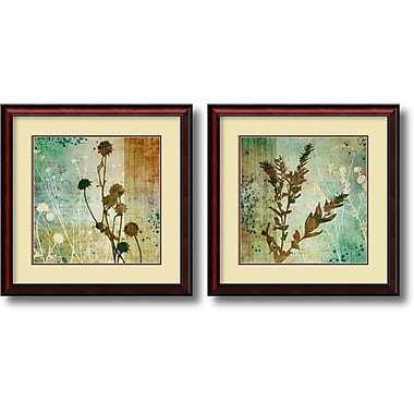 Amanti Art ? ?uvre encadrée « Organic Elements » par Tandi Venter, 2/paquet (DSW1004268)