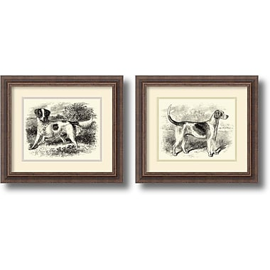 Amanti Art English Setter and Foxhound Framed Art, 2/Pack (DSW1004304)