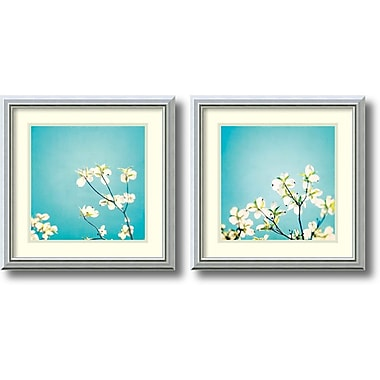 Amanti Art Delicate Skies of Blue Framed Art by Carolyn Cochrane, 2/Pack (DSW1004310)