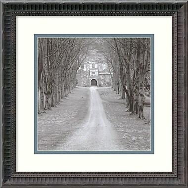 Amanti Art Cranbourne, England Framed Art by Charlie Waite (DSW419008)