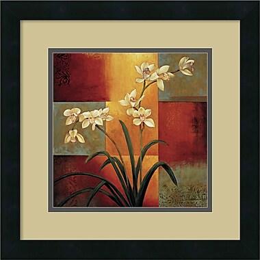 Amanti Art ? Art encadré « White Orchid » par Jill Deveraux (DSW419161)