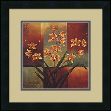 Amanti Art Orange Orchid Framed Art by Jill Deveraux (DSW419162)
