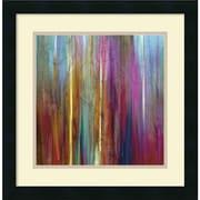 """Amanti Art """"Sunset Falls I"""" Framed Art by John Butler"""
