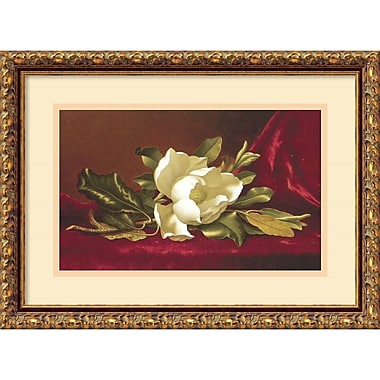 Amanti Art ? ?uvre encadrée « The Magnolia Flower » par Martin Johnson Heade (DSW430940)