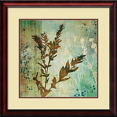 Amanti Art Organic Elements II Framed Art by Tandi Venter (DSW430958)