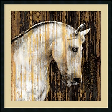 Amanti Art Horse II Framed Art by Martin Rose (DSW973756)