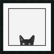 Amanti Art Curiosity Framed Art by Jon Bertelli (DSW981533)