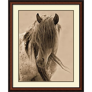 Amanti Art Freedom Framed Art by Lisa Dearing (DSW981559)