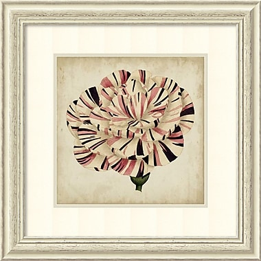 Amanti Art Pop Floral VI Framed Art by Vision Studio (DSW981589)