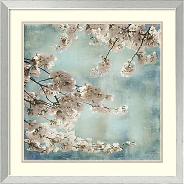 Amanti Art Aqua Blossoms II Framed Art by John Seba (DSW982423)