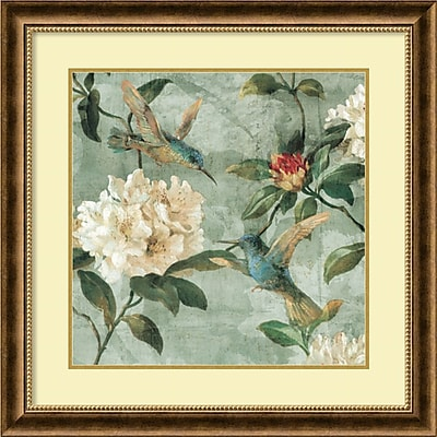 """""""""""Amanti Art """"""""""""""""Birds of a Feather I"""""""""""""""" Framed Art by Renee Campbell"""""""""""" 1209394"""