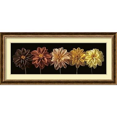 Amanti Art Floral & Still Life Salute Framed Art by Assaf Frank (DSW982686)