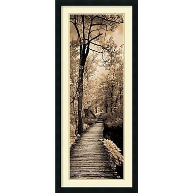 Amanti Art A Quiet Stroll I Framed Art by Ily Szilagyi (DSW982691)