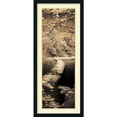 Amanti Art A Quiet Stroll II Framed Art by Ily Szilagyi (DSW982692)