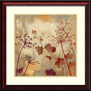 Amanti Art Wild Field II Framed Art by Aimee Wilson (DSW986672)