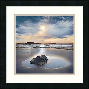 Amanti Art Perfect Fit Framed Art by William Vanscoy (DSW986786)