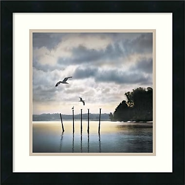 Amanti Art Circling Skies Framed Art by William Vanscoy (DSW986793)