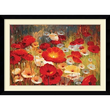 Amanti Art Meadow Poppies I Framed Art by Lucas Santini (DSW986934)