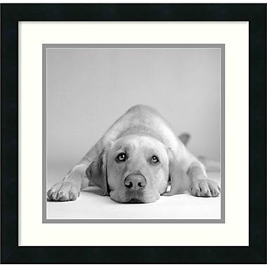Amanti Art Tally Framed Art by Amanda Jones (DSW986938)