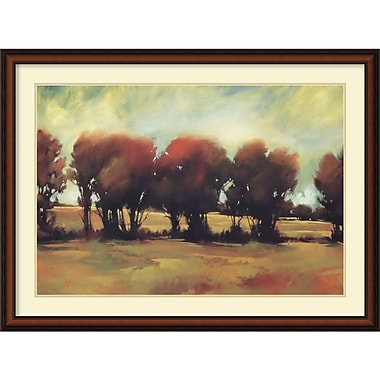 Amanti Art Storm Swept Framed Art by Greg Stocks (DSW986979)