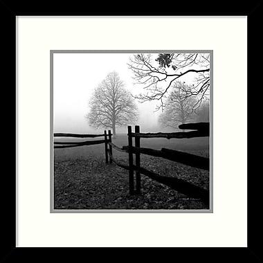 Amanti Art ? ?uvre encadrée « Fence in the Mist » par Harold Silverman (DSW987451)