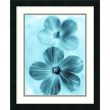 Amanti Art Forget Me Not Blue I Framed Art by Teton Parchment (DSW987455)