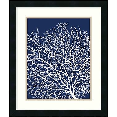 Amanti Art Navy Coral I Framed Art by Sabine Berg (DSW987459)