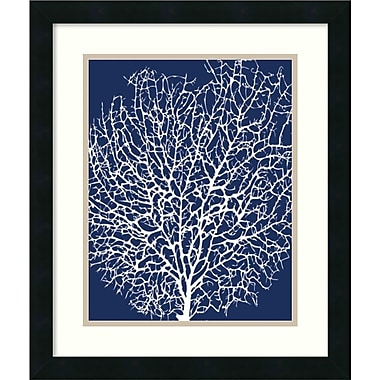 Amanti Art Navy Coral II Framed Art by Sabine Berg (DSW987460)