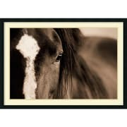 "Amanti Art ""Dark Eyes"" Framed Art by Lisa Dearing"