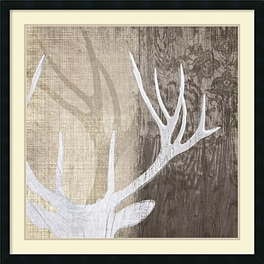 Amanti Art Deer Lodge II Framed Art by Tandi Venter (DSW987774)