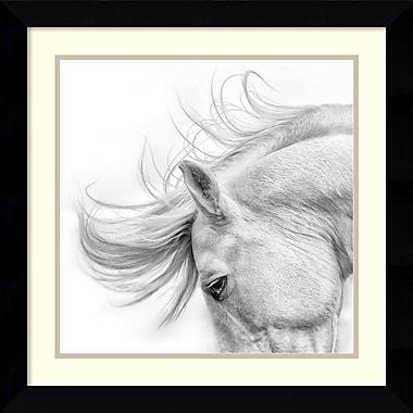 Amanti Art Flair Framed Art by Phyllis Bruchett (DSW988011)