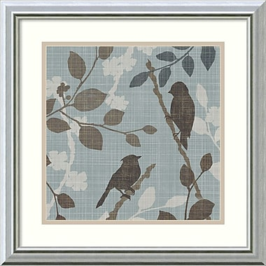 Amanti Art A Sparrows Garden II Framed Art by Tandi Venter (DSW992100)