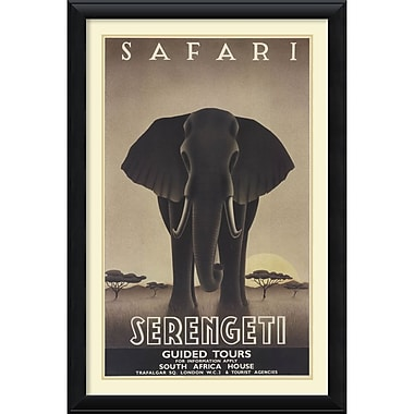 Amanti Art Serengeti Framed Art by Steve Forney (DSW992133)