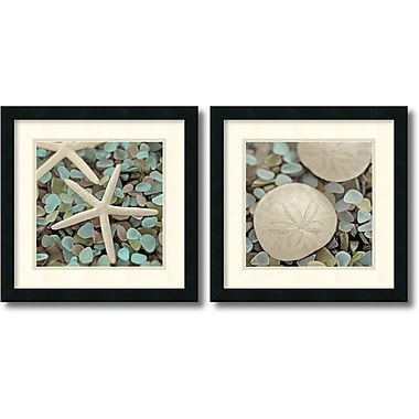 Amanti Art Aquatic Framed Art by Alan Blaustein, 2/Pack (DSW995039)