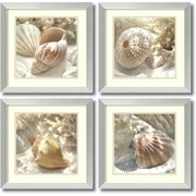"Amanti Art ""Coral Shell - Set of 2"" Framed Art by Donna Geissler"