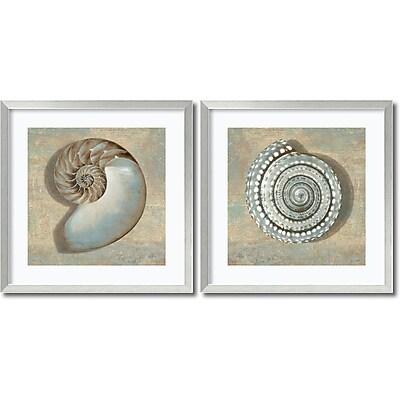 """""Amanti Art """"""""Aqua Shells - Set of 2"""""""" Framed Art by Caroline Kelly"""""" 1209031"