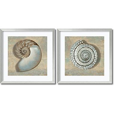 Amanti Art Aqua Shells Framed Art by Caroline Kelly, 2/Pack (DSW995052)