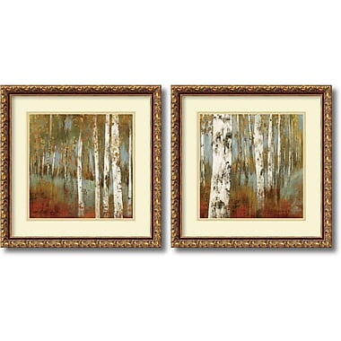Amanti Art Along the Path Framed Art by Allison Pearce, 2/Pack (DSW995061)