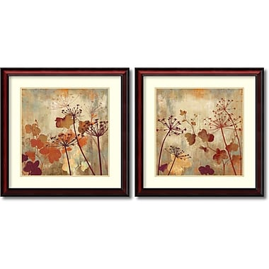 Amanti Art Wild Field Framed Art by Aimee Wilson, 2/Pack (DSW995073)