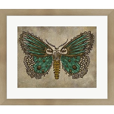 Evive Designs Lace Wing I by Chariklia Zarris Framed Painting Print