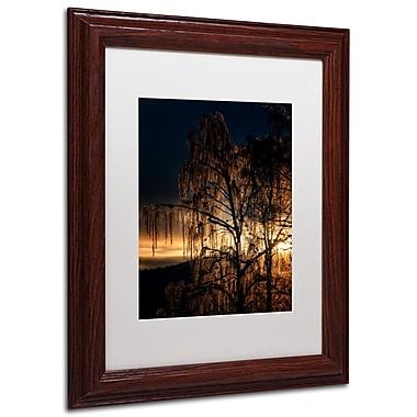 Trademark Erik Brede White Matte W/Wood Frame