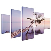 "Trademark Moises Levy ""Water Tree XV"" Gallery-Wrapped Canvas Art Set, 3.6' x 2.8'"